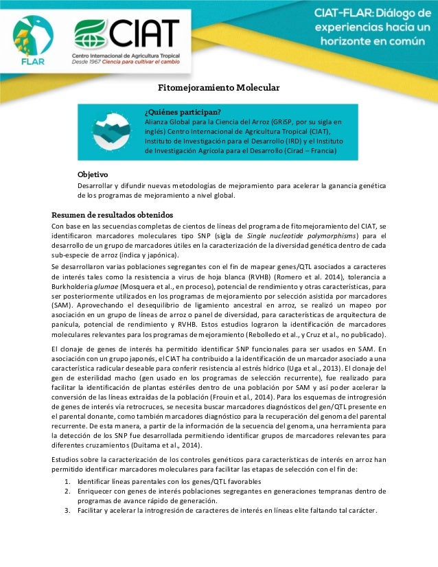 Fitomejoramiento Molecular     Objetivo Desarrollarydifundirnuevasmetodologíasdemejoramientoparaacele...