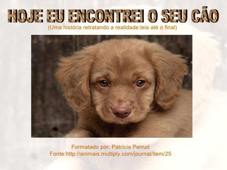(Uma história retratando a realidade:leia até o final) Formatado por: Patrícia Perrud Fonte:http://animais.multiply.com/jo...
