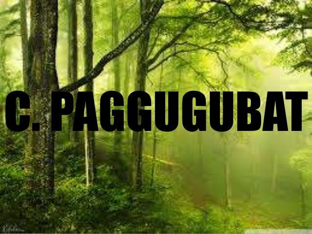ANG KAHALAGAHAN NG LIKAS KAYANG PAGGAMIT SA PANGINGISDA AT PAGTOTROSO page. 375