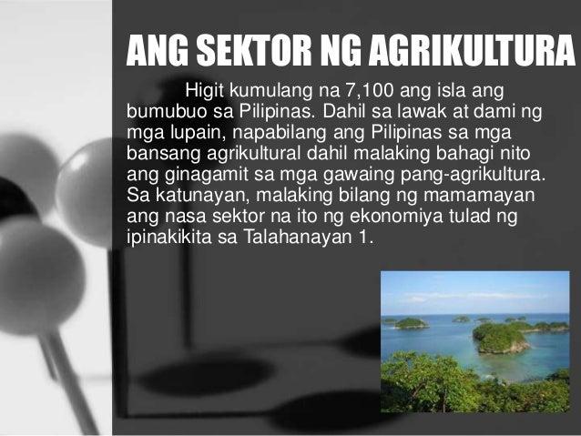 ANG SEKTOR NG AGRIKULTURA Higit kumulang na 7,100 ang isla ang bumubuo sa Pilipinas. Dahil sa lawak at dami ng mga lupain,...