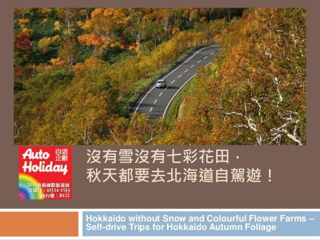 沒有雪沒有七彩花田,  秋天都要去北海道自駕遊!  Hokkaido without Snow and Colourful Flower Farms –  Self-drive Trips for Hokkaido Autumn Foliage