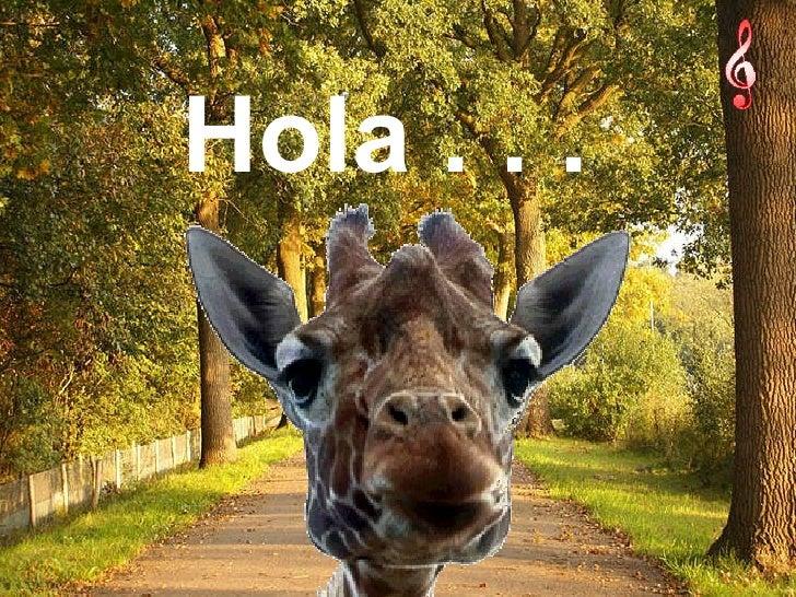 Hola . . .