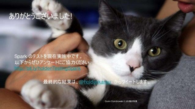 24 24IBM Spark 24 Quinn Dombrowski による猫の写真 ありがとうございました! Spark のテストを現在実施中です。 以下からぜひアンケートにご協力ください。 http://bit.ly/holdenTesti...