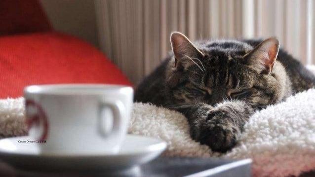 5 5IBM Spark 5 猫の写真は以下から取ったものです。 http://galato901.deviantart.com/art/Cat-on-Work-Break-173043455 Cocoa Dream による写真