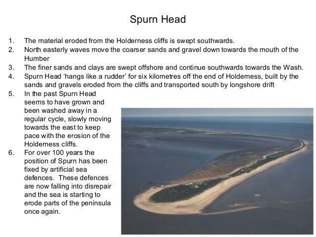 holderness coast landforms case study