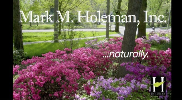 Holeman Landscapes Before and After