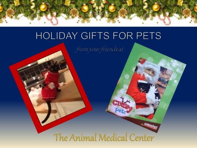 The Animal Medical Center