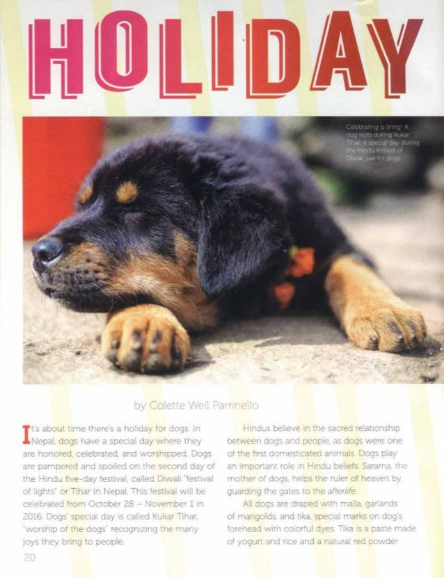 Holiday Just for Dogs by Colette Weil Parrinello Cobblestone Pub