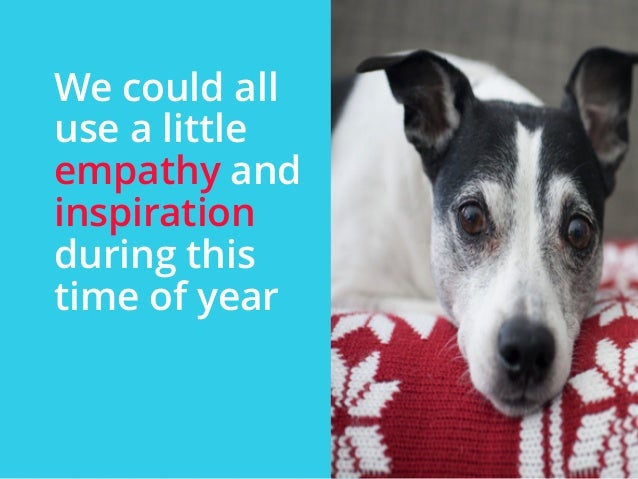 | ‹#›  We could all  use a little  empathy and  inspiration  during this  time of year