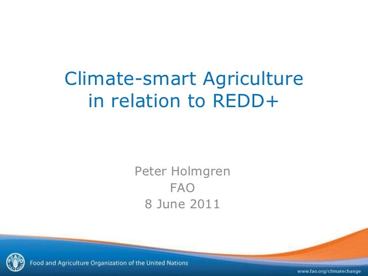 Climate-smart Agriculture in relation to REDD+ Peter Holmgren FAO 8 June 2011