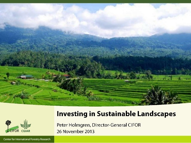 C I F O R Center for International Forestry Research  Vision: Forestry and Landscapes are high on the political agenda an...