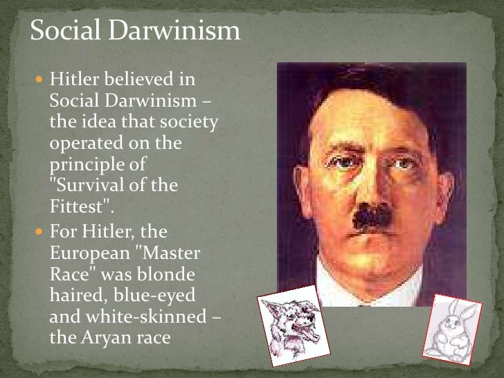 social darwinism and the holocaust