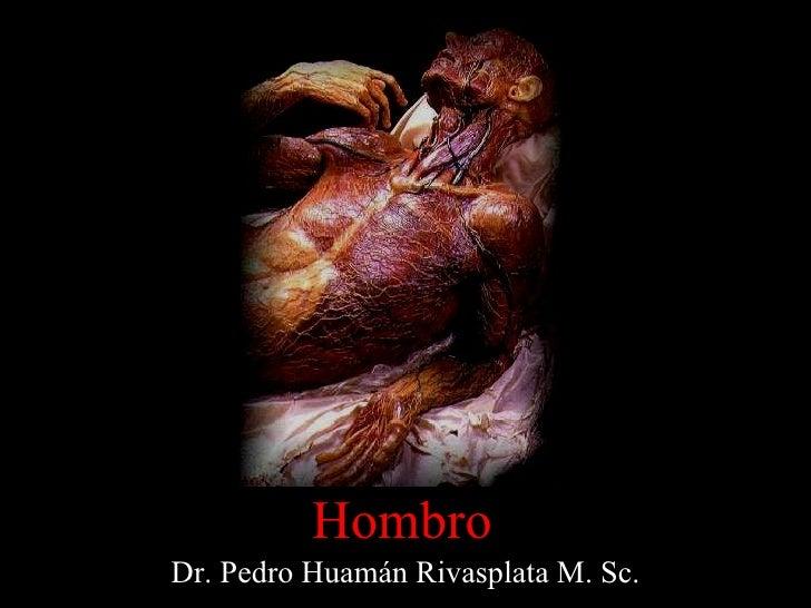 Dr. Pedro Huamán Rivasplata M. Sc. Hombro