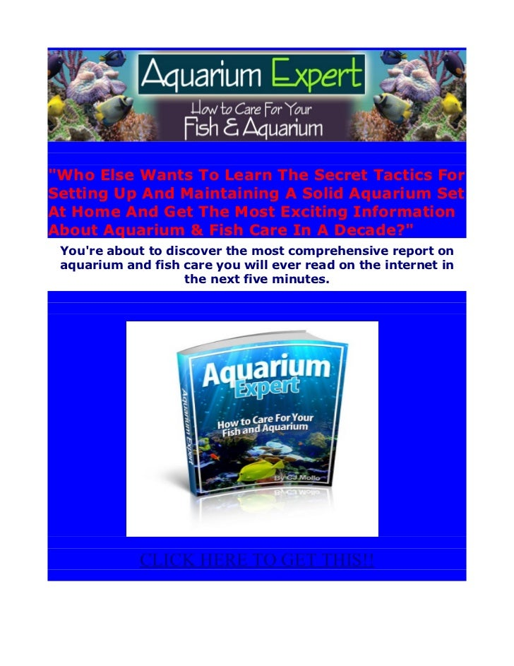 """""""Who Else Wants To Learn The Secret Tactics ForSetting Up And Maintaining A Solid Aquarium SetAt Home And Get The Most Exc..."""