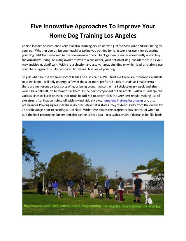 Five Innovative Approaches To Improve Your Home Dog Training Los Angeles Canine leashes or leads are a very essential trai...