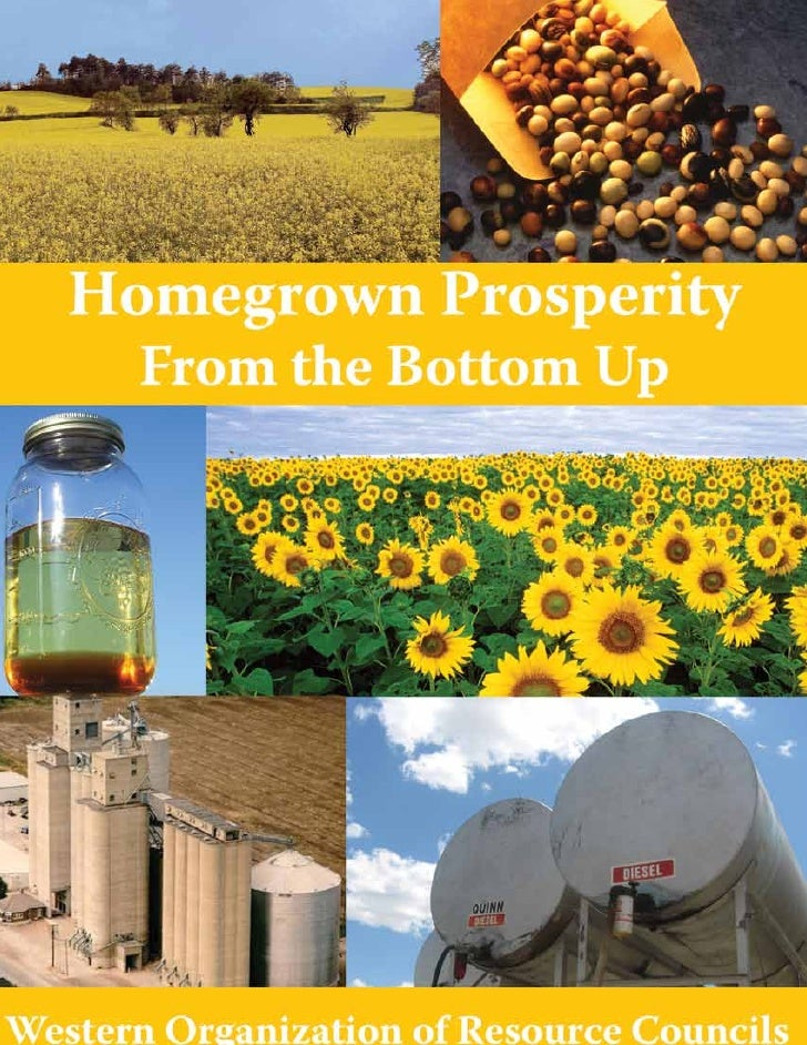 Homegrown Prosperity from the Bottom Up   A Report on Small and Community-scale Biodiesel         Wilbur and Elizabeth Woo...