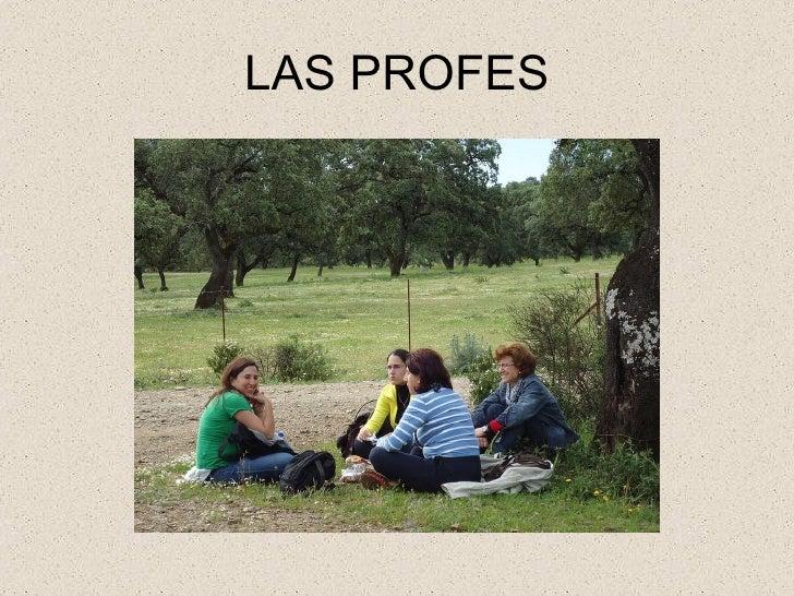 LAS PROFES