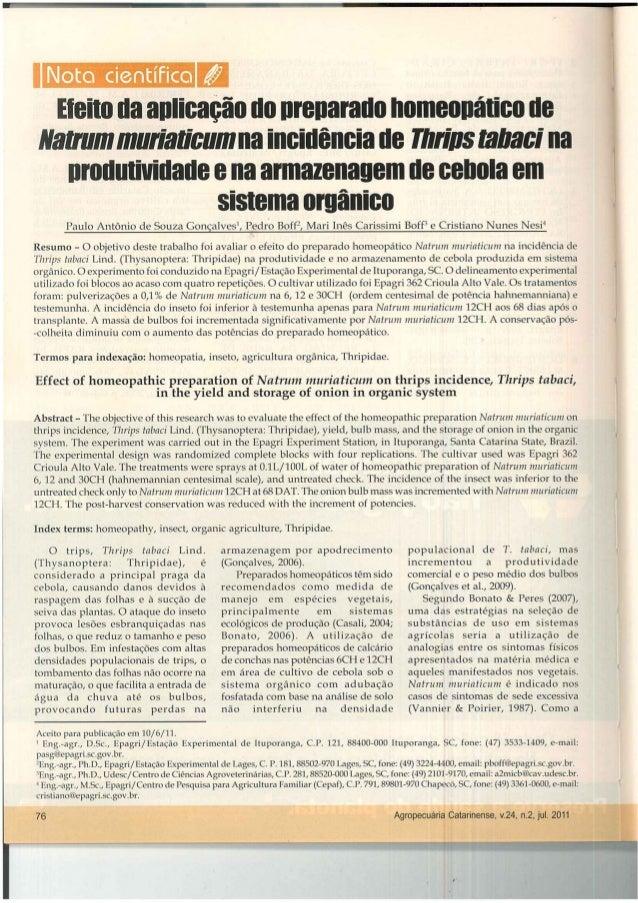 Homeopatia vegetal: Efeito da aplicação do preparado homeopático de Natrum muriaticum na incidência de Thrips tabaci, na p...