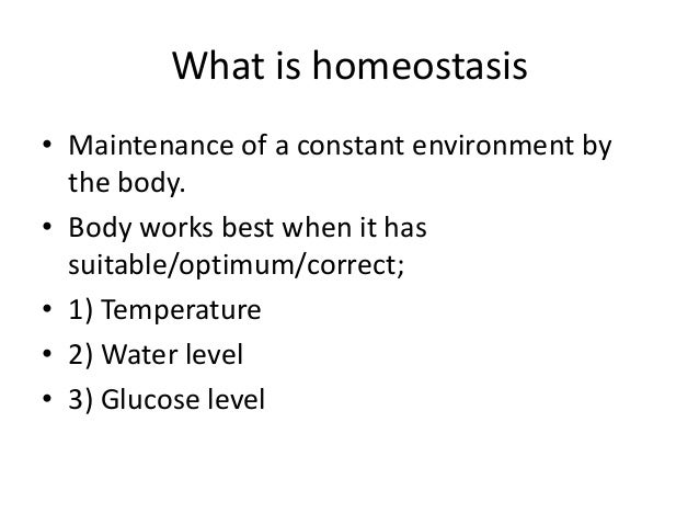 what is homeostasis Homeostasis do not capitalize answers, or add  which two organ systems do we need to maintain homeostasis include and between your answers.