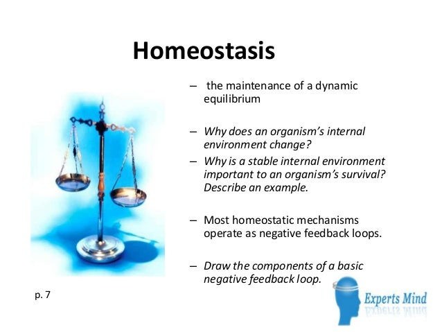 homeostasis-1-638.jpg?cb=1365748113