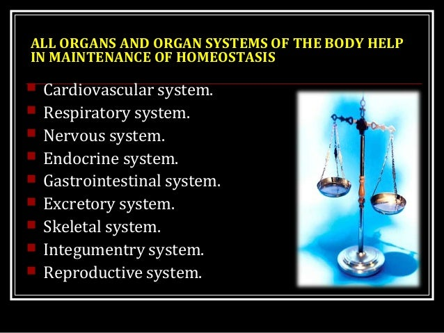 ALL ORGANS AND ORGAN SYSTEMS OF THE BODY HELP IN MAINTENANCE OF HOMEOSTASIS  Cardiovascular system.  Respiratory system....