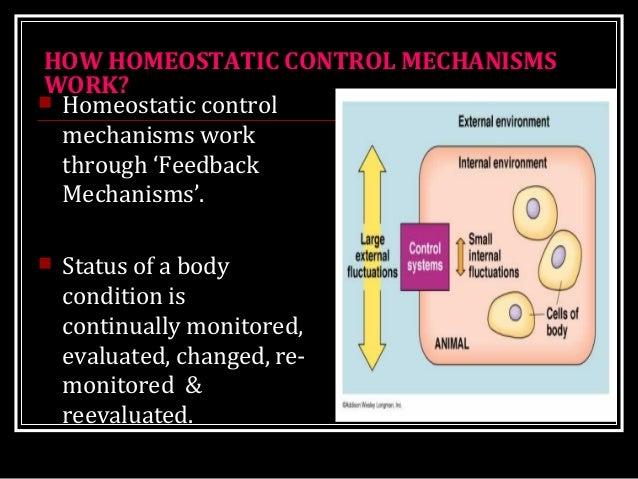 HOW HOMEOSTATIC CONTROL MECHANISMS WORK?  Homeostatic control mechanisms work through 'Feedback Mechanisms'.  Status of ...