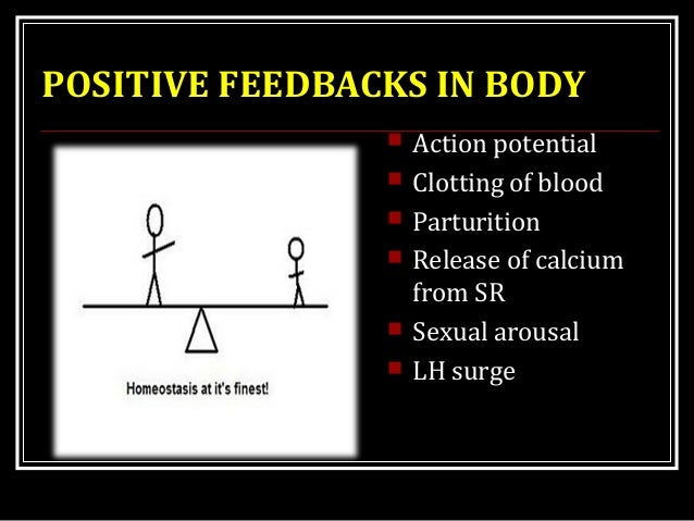 POSITIVE FEEDBACKS IN BODY  Action potential  Clotting of blood  Parturition  Release of calcium from SR  Sexual arou...