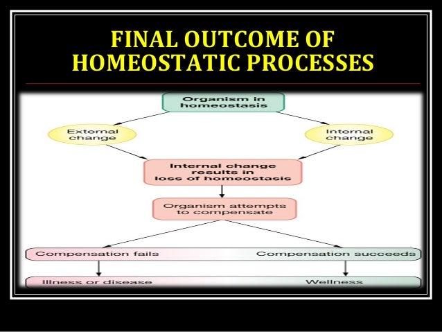FINAL OUTCOME OF HOMEOSTATIC PROCESSES
