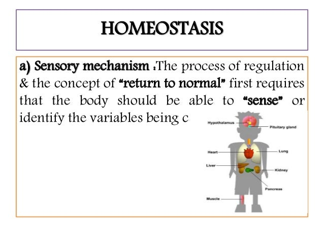 Homeostasis, the ability of body to maintain its internal..