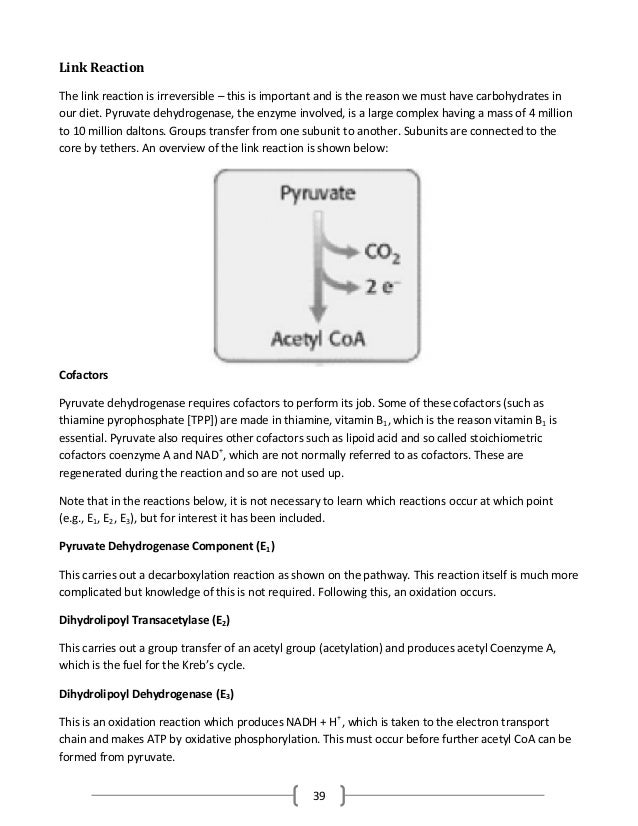39 Link Reaction The link reaction is irreversible – this is important and is the reason we must have carbohydrates in our...
