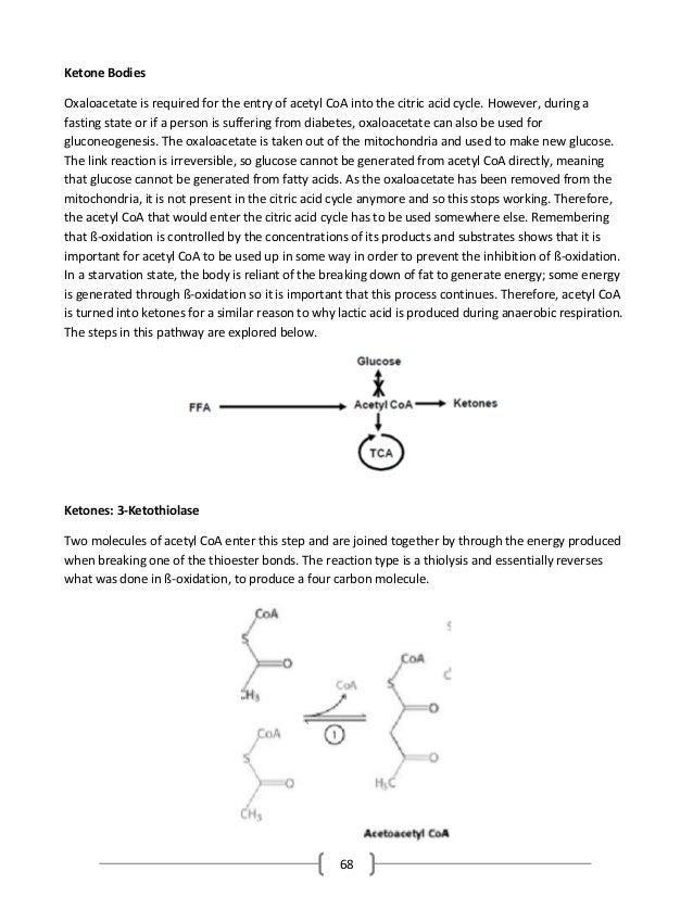 68 Ketone Bodies Oxaloacetate is required for the entry of acetyl CoA into the citric acid cycle. However, during a fastin...