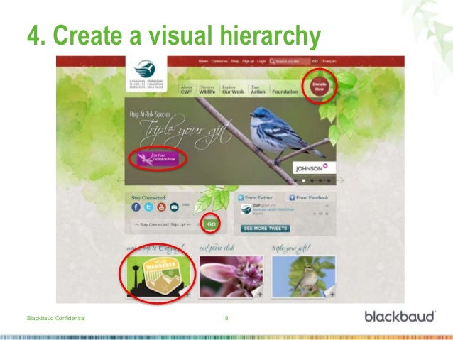 Create A Visual Hierarchy Blackbaud Confidential 8