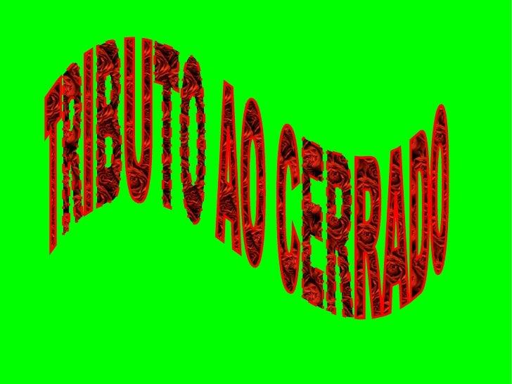 TRIBUTO AO CERRADO