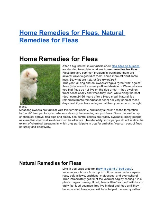 Home Remedies for Fleas, NaturalRemedies for FleasHome Remedies for FleasAfter a big interest in our article about flea bi...
