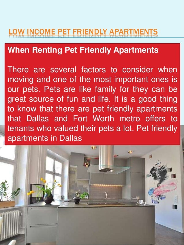 Apartments For Rent In Dallas With No Credit Check