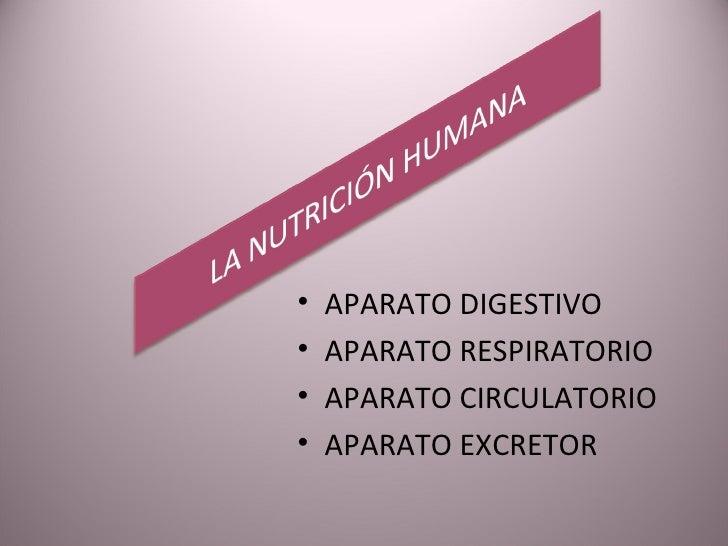<ul><li>APARATO DIGESTIVO </li></ul><ul><li>APARATO RESPIRATORIO </li></ul><ul><li>APARATO CIRCULATORIO </li></ul><ul><li>...