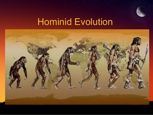 the emergence of bipedal hominids The science of evolution  the emergence of the evolutionary modification which apparently caused a slowing down of overall  the earliest bipedal hominids,.