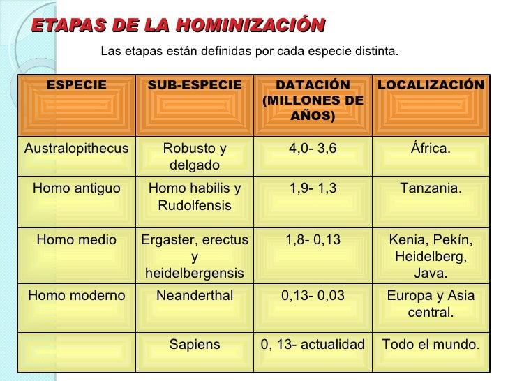 Brunschvicg Las Etapas De La Hominizacion