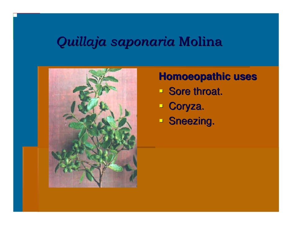 Homoeopathic Medicinal Plants With Uses