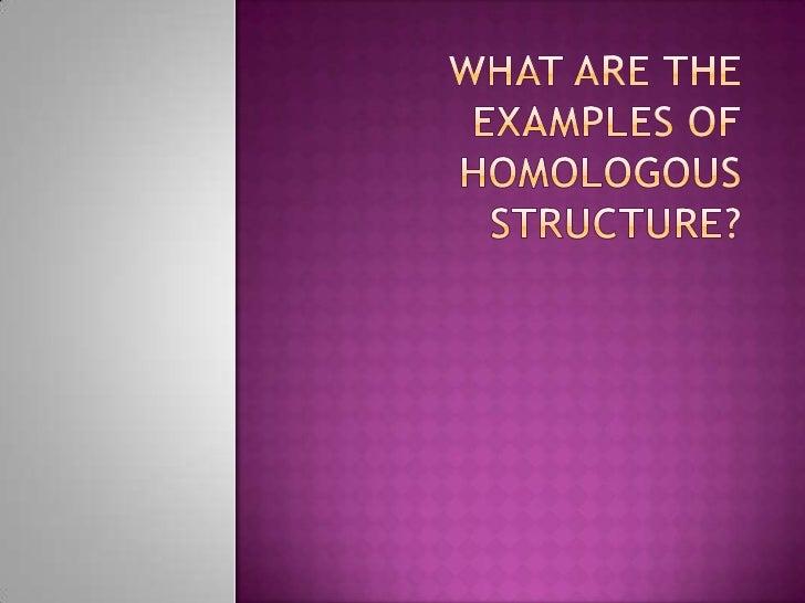 Homologous Structure Evolution