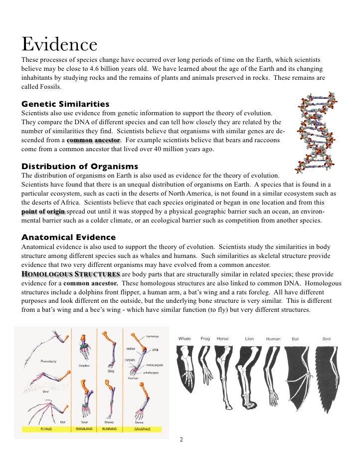 Homologous Structures – Homologous Structures Worksheet
