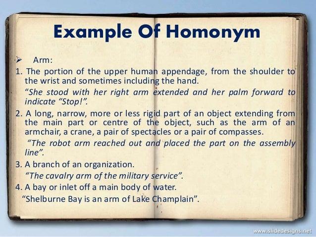 Homonym Polysemy