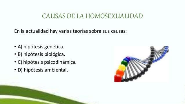 Homosexual causas