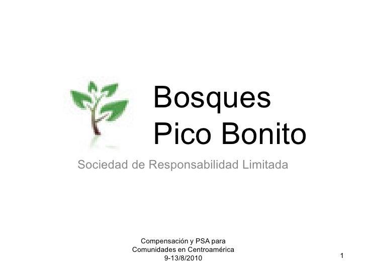 Bosques              Pico BonitoSociedad de Responsabilidad Limitada           Compensación y PSA para         Comunidades...