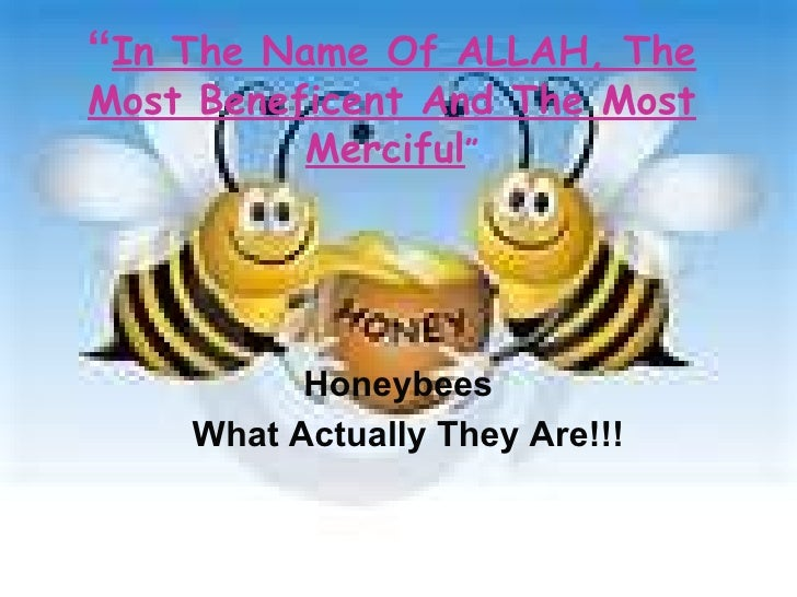 """ In The Name Of ALLAH, The Most Beneficent And The Most Merciful "" Honeybees What Actually They Are!!!"