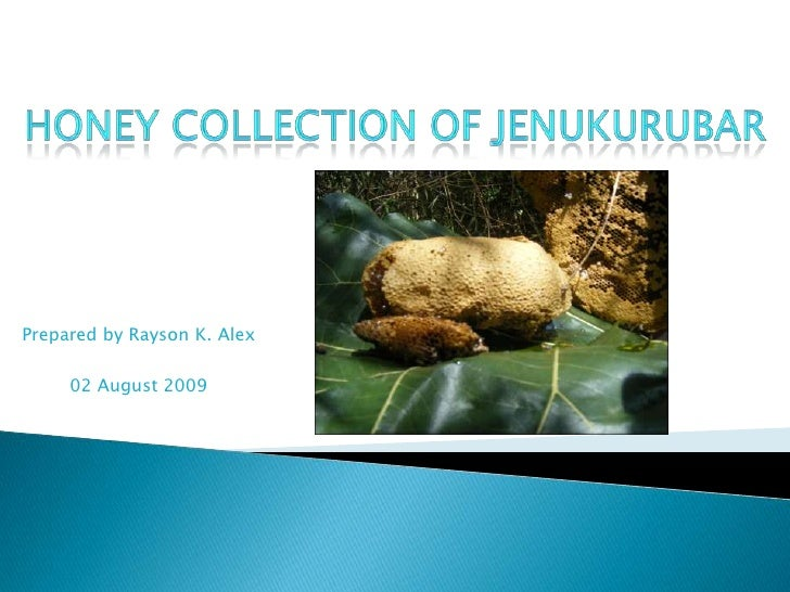 Honey Collection of Jenukurubar<br />Prepared by Rayson K. Alex<br />02 August 2009<br />