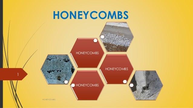 HONEYCOMBS HONEYCOMBS 1 HONEYCOMBS HONEYCOMBS HONEYCOMBS