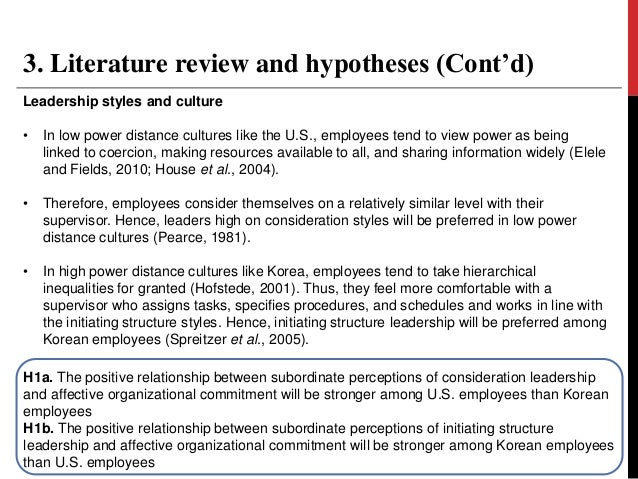literature review on leadership in organisations A literature review on leadership in the early years april 2008aline-wendy dunlop this literature review updates the review undertaken in.