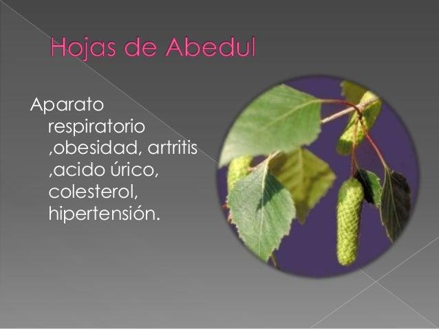 productos para acido urico niveles de acido urico elevados alimentos parael acido urico