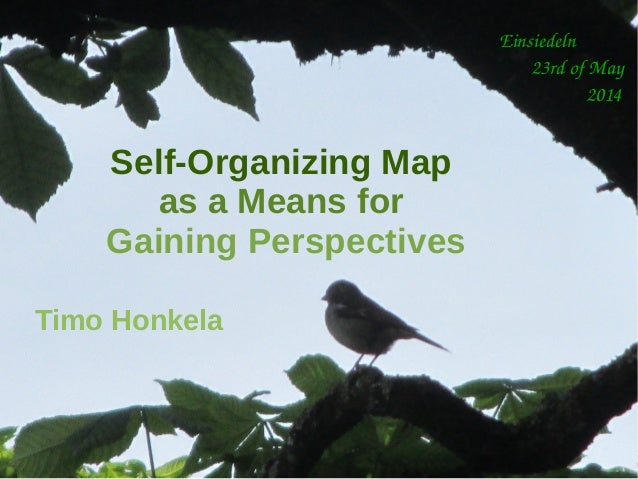 Timo Honkela in Metalithicum #5: Self-Organizing Map as a Means for Gaining Perspectives, Einsiedeln, 23rd of May, 2014 Ei...